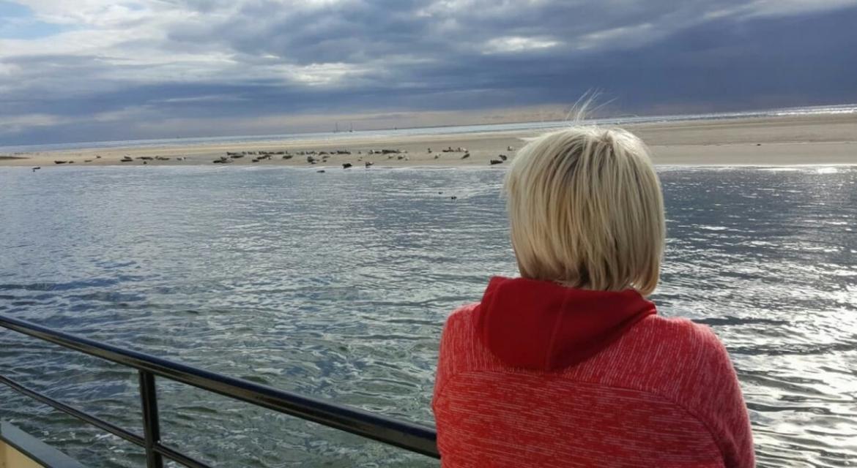 Zeiltocht met Pinksteren op Waddenzee