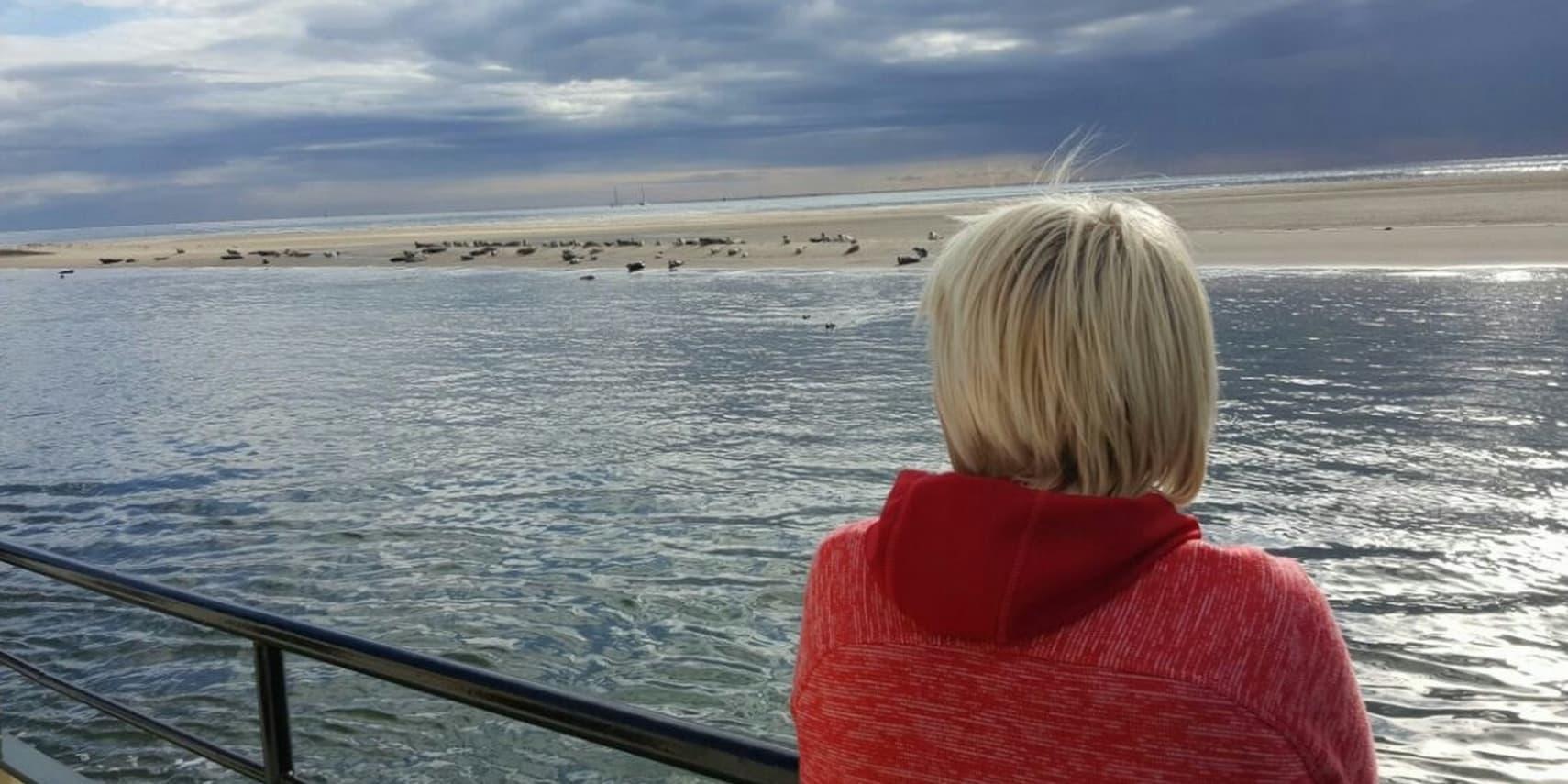 jongen die uitkijkt op de zeehonden op het wad