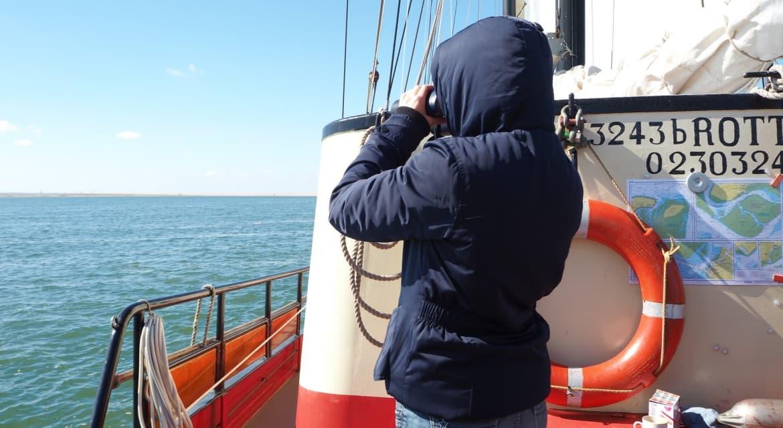 zeilboot klipper rode swan